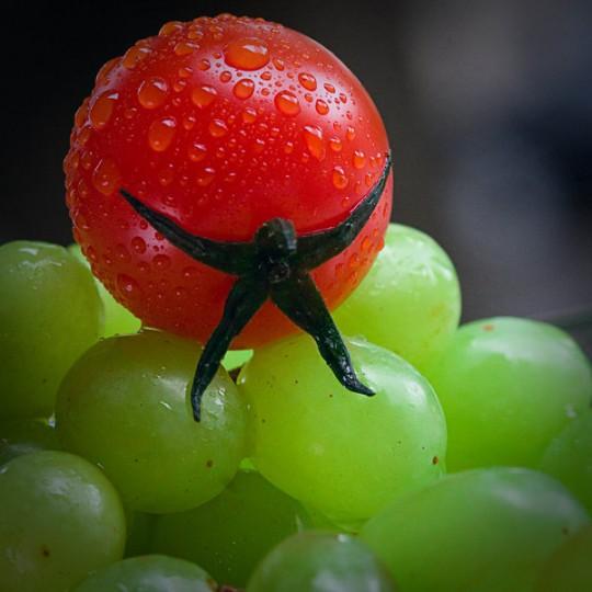 escalade fruit