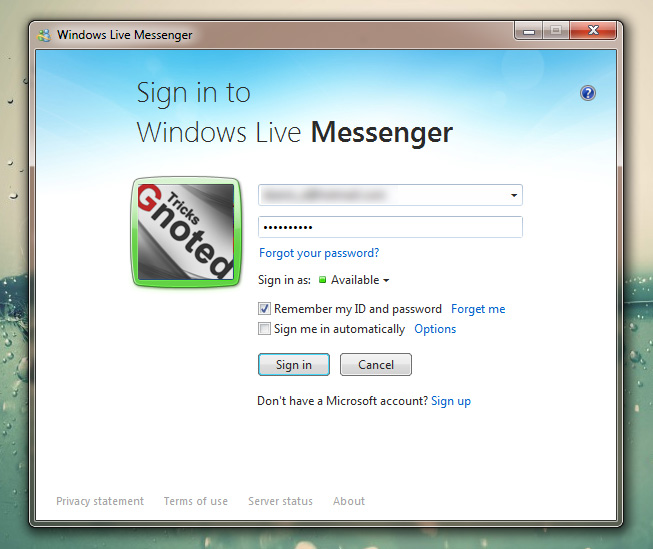 Windows Live Messenger login window